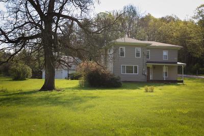 Wellsboro Single Family Home For Sale: 63 Hilboldt Road