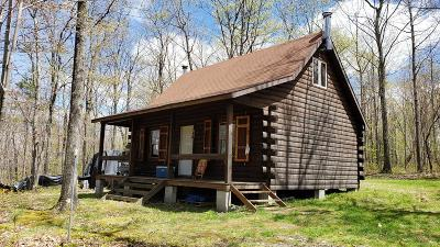 Coudersport, Galeton, Gaines, Wellsboro, Mansfield, Mainesburg, Troy, Sayre, Lawrenceville, Elkland, Knoxville, Westfield, Genesee, Liberty, Williamsport Single Family Home For Sale: - Route 328 (Buck Hill Rd.)