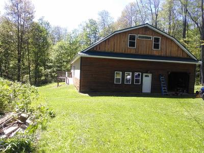 Coudersport Single Family Home For Sale: 252 Green Forest Road