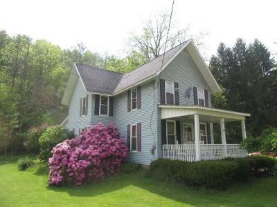Ulster Single Family Home For Sale: 129 Berwick Tpk