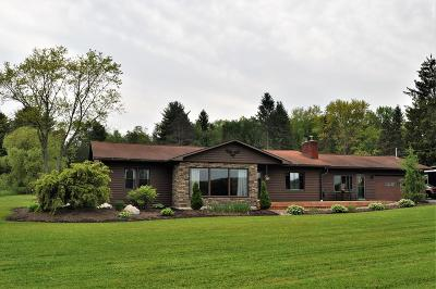 Wellsboro Single Family Home For Sale: 895 Route 660