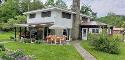 Coudersport Single Family Home For Sale: 130 Cherry Springs Road