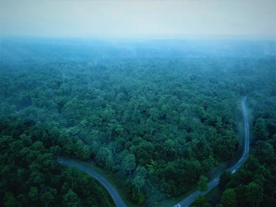 Covington Residential Lots & Land For Sale: Forrest Glen