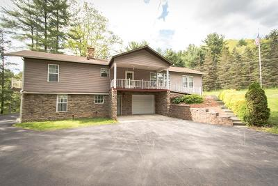 Galeton Single Family Home For Sale: 269 Rt 6 W
