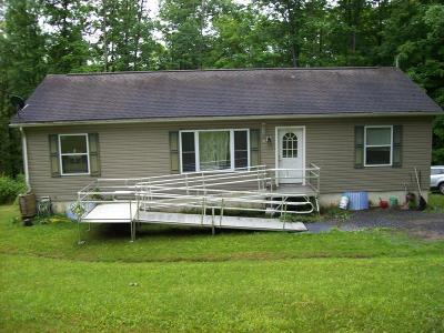 Wellsboro Single Family Home For Sale: 32 Lilac Lane