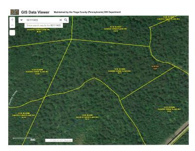 Wellsboro Residential Lots & Land For Sale: Lot #11 Rock Run Lane