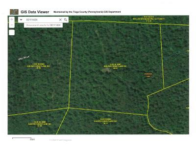 Wellsboro Residential Lots & Land For Sale: Lot # 12 Timber Hill Lane