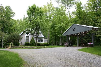 Middlebury Center Single Family Home Uc - Continue To Show: 175 Baldwin Run Rd