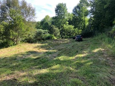 Tioga Residential Lots & Land Uc - Continue To Show: 47 Lost Lane Dr.