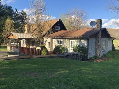 Knoxville Single Family Home For Sale: 749 Rose Valley Road