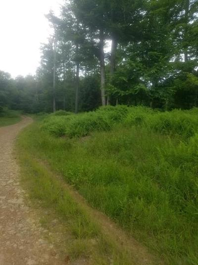 Potter County Residential Lots & Land For Sale: 342 Rocking Rock Road