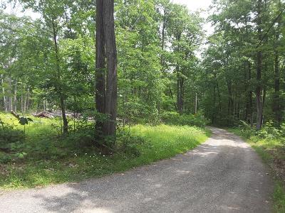 Gaines Residential Lots & Land For Sale: 12 Deer Lick