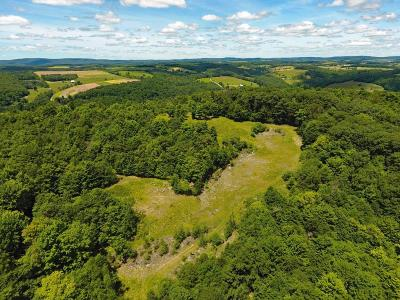 Wellsboro Residential Lots & Land For Sale: Stony Fork Creek Rd