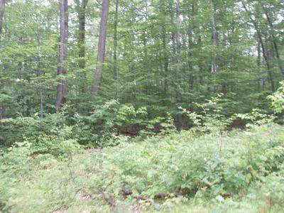 Westfield Residential Lots & Land For Sale: Lot #9 Baldwin Run Road