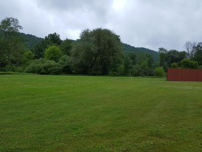 Coudersport Residential Lots & Land For Sale: 13 W. Pine St