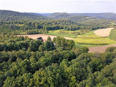 Potter County Residential Lots & Land For Sale: Ridge Road