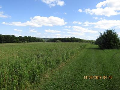 Gaines Residential Lots & Land For Sale: 98 Stony Lane