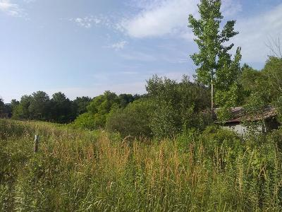Knoxville Residential Lots & Land For Sale: Doan Road