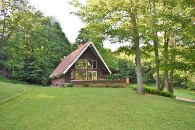 Coudersport Single Family Home For Sale: 782 Whitney Creek Road