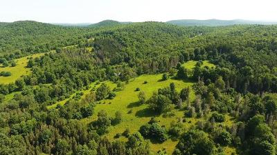 Morris Residential Lots & Land For Sale: 200 Hurley Hill Road