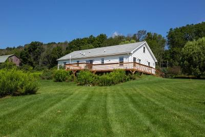 Troy Single Family Home For Sale: 9638 Old State Road