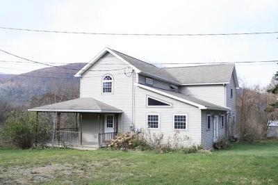 Wellsboro Single Family Home For Sale: 67 Maier Lane