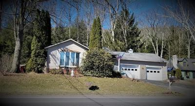 Wellsboro Single Family Home For Sale: 9885 Route 287