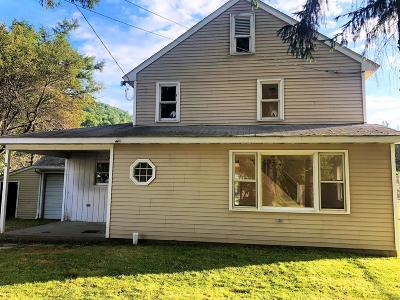 Coudersport Single Family Home For Sale: 11 Carley Lane