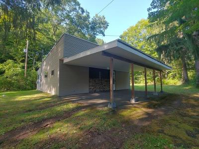 Tioga Single Family Home For Sale: 531 Button Hill Rd