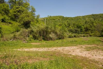 Gaines Residential Lots & Land For Sale: Ridge Road