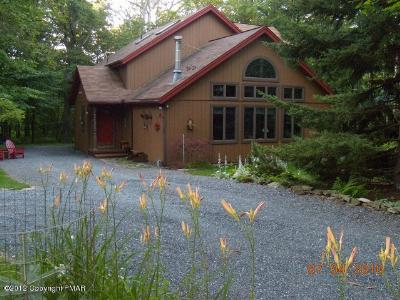 Pocono Lake Single Family Home For Sale: 292 Berry Lane