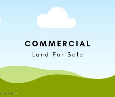 Brodheadsville Residential Lots & Land For Sale: 2 Us 209 Pa