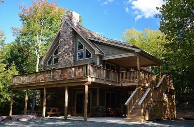 Lake Harmony Single Family Home For Sale: 17 Estates Drive