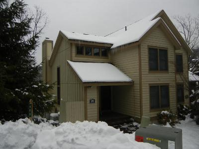 Tannersville Single Family Home For Sale: 403 Vista Dr