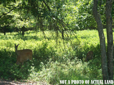 Blakeslee Residential Lots & Land For Sale: Lot 44 Sec Forest Hill Drive