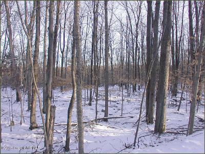 Monroe County Residential Lots & Land For Sale: 1 2 Wechquetank Drive