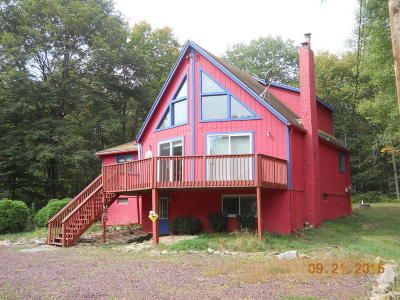 Lake Harmony Single Family Home For Sale: 28 Stream Dr