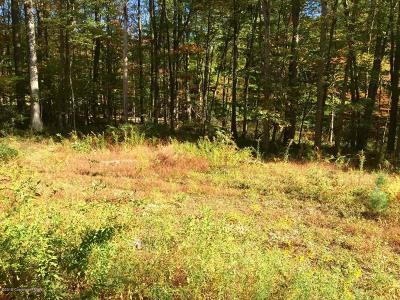 Monroe County Residential Lots & Land For Sale: #3 New York Blvd