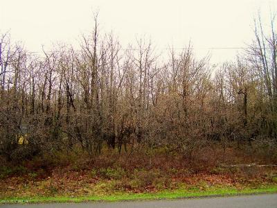 Blakeslee Residential Lots & Land For Sale: 62 Crest View Road