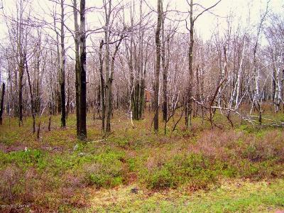 Blakeslee Residential Lots & Land For Sale: 33 Forest Hill Drive
