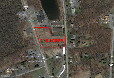 Mount Pocono Residential Lots & Land For Sale: 1149 Route 611