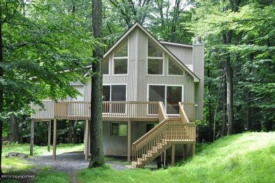 Pocono Lake Single Family Home For Sale: 161 Beech Ln