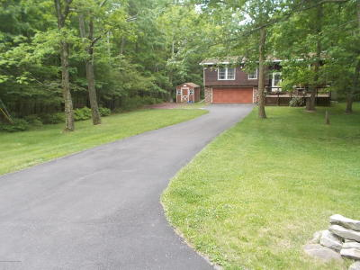 Jim Thorpe Single Family Home For Sale: 36 Piney Woods Dr