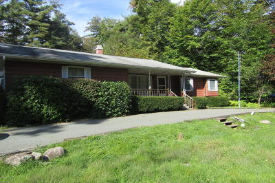 Blakeslee PA Single Family Home For Sale: $99,999