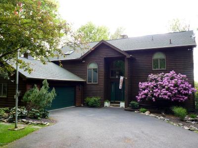 Lake Harmony Single Family Home For Sale: 11 Hazlewood Dr