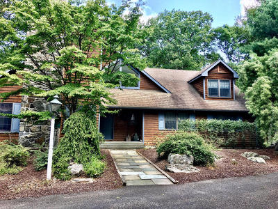 Skytop Single Family Home For Sale: 2914 Route 390