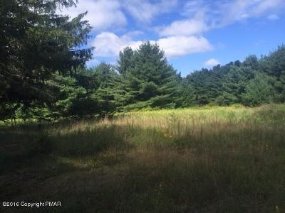 East Stroudsburg Residential Lots & Land For Sale: 310 Hallet Rd
