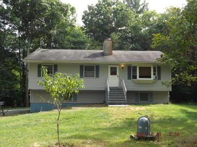 Kunkletown Single Family Home For Sale: 107 Plum Dr