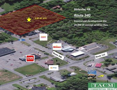Blakeslee Commercial For Sale: 940 Pa Rte 940