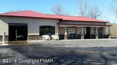 Tannersville Commercial For Sale: 3054 Route 611 Rte